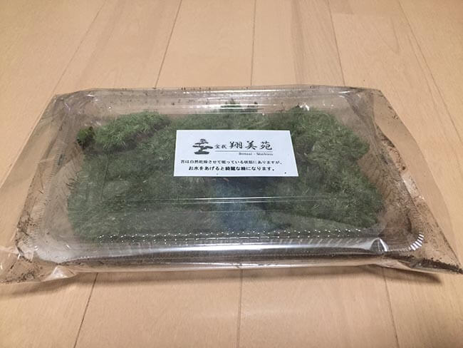【 翔美苑 】 日光産 山苔 ヤマゴケ 饅頭苔 マンジュウゴケ