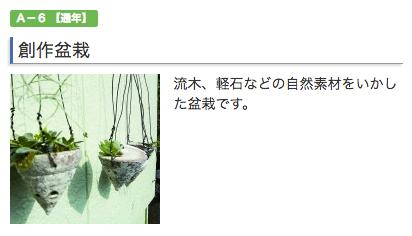 ふるさと納税 盆栽 熊本県天草群苓北町