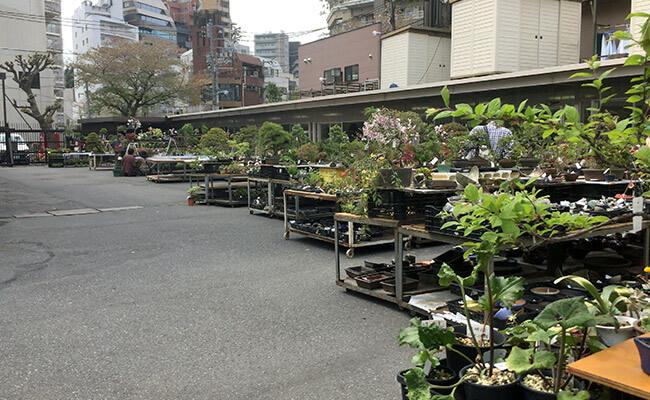 上野グリーンクラブ(東京盆栽倶楽部)常設販売所全景