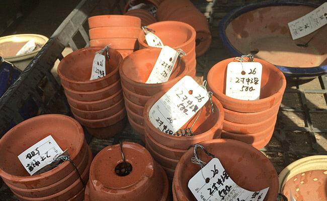 上野グリーンクラブ(東京盆栽倶楽部)盆栽ばち素焼き