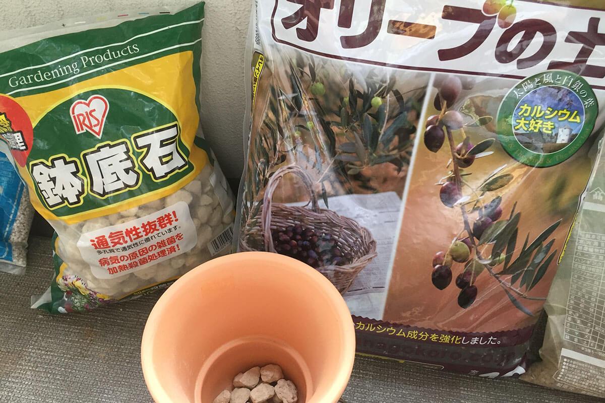 オリーブ植え替えセット。土、素焼き鉢、底石
