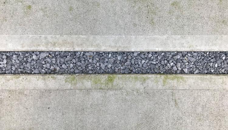 アパート コンクリートの苔
